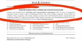 Preferred Resume Format Adorable Nobby Resume Resume Experts Popular Resume Format Resume Template