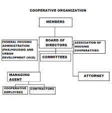 Hud Organizational Chart Ralph Bunche Cooperative Homes Updates Who Is In Charge