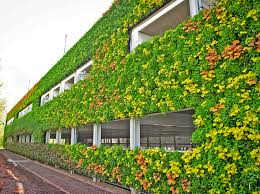 Small Picture living Wall Inhabitat Green Design Innovation Architecture