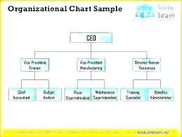Printable Organizational Chart Template Functional Structure Sample