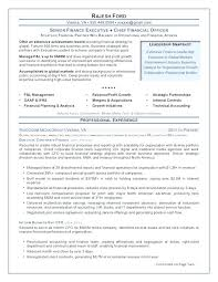 Resume Examples For Executives Chief Marketing Officer Resume Sample ...