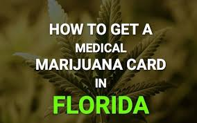 A Ceo Launches Florida Gellert Cbd Jacksonville Connection Mike New wYYSBE