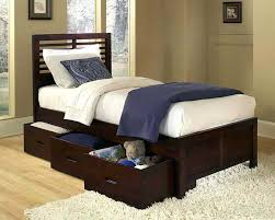 twin bed for adults universitybirdcom