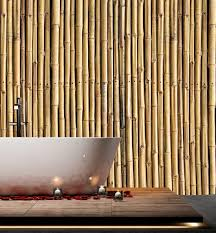 Bamboo Wall Design Images Bamboo Design On Wall