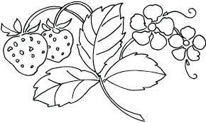 Floral Coloring Pages Bouquet Of Flowers Coloring Page Flower