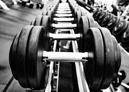 Weights Measures Chart Weightlifting Destiny Fitness