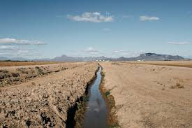 should the u s adopt water markets like s to solve the an irrigation ditch in arizona s harquahala valley about an hour west of phoenix bryan schutmaat