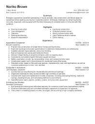 Resume Summary Examples Hostess Combined With Sample Resume For Custom Resume Summary Examples For Retail