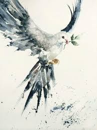 love the shape of this dove love the way the wings are messy idea olive tattooolive branch