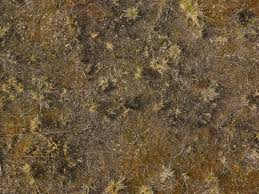 dark dirt texture seamless. Texture Consisting Of Small Tufts Dry Grass In Dark, Barren Dirt. Dark Dirt Seamless