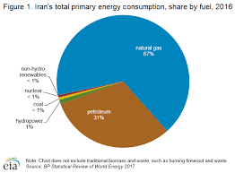 Iranian Government Flow Chart Iran Energy Profile Holds Some Of Worlds Largest Deposits