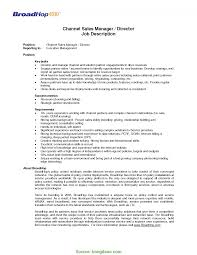 Infrastructure Manager Job Description Pics Great Sales Resume