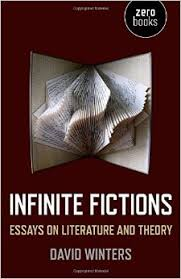 infinite fictions essays on literature and theory david winters  infinite fictions essays on literature and theory