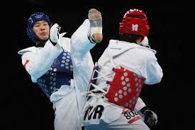 Αποτέλεσμα εικόνας για wtf taekwondo game