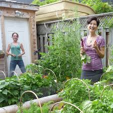 do it yourself raised garden beds. There Are So Many Ways You Can Grow Your Own Food And We Show How! Choose Our Do-It-Yourself Raised Bed Kits, Garden Beds Installed By Do It Yourself