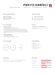 entry by pervizhebibli for make me a new cv resume lancer contest entry 19 for make me a new cv resume