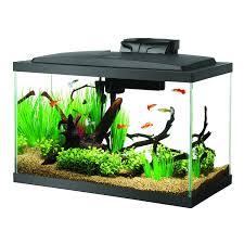 Fish Tank Amazoncom Aqueon Fish Aquarium Starter Kit Led 10 Gallon Pet