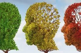علماء يبتكرون خلايا عصبية صناعية images?q=tbn:ANd9GcR6JGjNj8oZw8SPjfdmnAzEQB4YFrGNQNvbfTt6xB1qhe7lHtXq&s