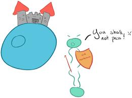 Venn Diagram Of Diffusion Osmosis And Active Transport Passive Transport And Active Transport Across A Cell