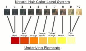 Hair Color Filler Chart How To Formulate Gray Hair Coverage In Four Easy Steps