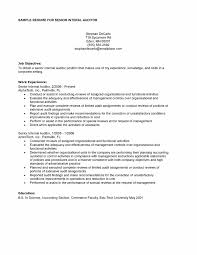 Gallery Of Internal Auditor Resume Sample Internal Resume Template