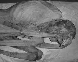на теле египетских мумий обнаружили древнейшие татуировки фокус
