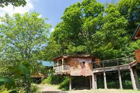 Tree House Hotel In Chile Nothofagus Hotel U0026 Spa  Tree House Treehouse Lake District