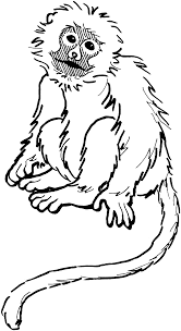 Small Picture Monkey Coloring Pages Love coloring pages 20 Free Printable