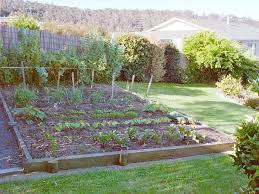 vegetables idea for home garden design