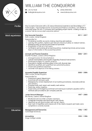 Account Resume Sample Executive Account Manager Resume Sample Resume Samples Career 22