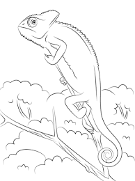Small Picture Lizards coloring pages Free Coloring Pages
