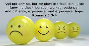 Roman 3 Romans 5 3 4 Kjv Bible Verse Of The Day Dailyverses Net
