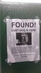 Lost Pet Flyer Maker 100 best TearOff Flyers images on Pinterest Funny stuff Ha ha and 64