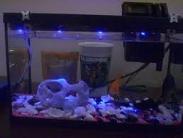 fish tank lights and temperature sensor alan parekh s electronic fish tank lights and temperature sensor