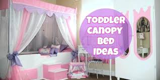 Girl Canopy Cute Toddler Bed And Decorating Ideas Princess Bedroom ...