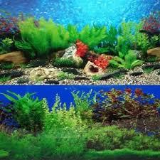 Aquarium Backgrounds Aquarium Background Ebay