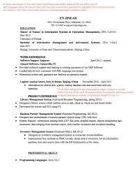 Business Objects Developer Resume Resume For Your Job Application