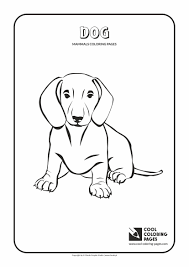 Cool Coloring Pages Mammals Coloring Pages Cool Coloring Pages