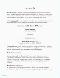 professional resume writing tips auto resume writer best great resume great sample cover letters