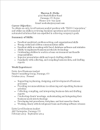 Sample Business Analyst Resume Entry Level Monzaberglauf Verbandcom