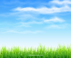 grass and sky backgrounds. Brilliant And 30 Blue Sky Background Vectors  Download Free Vector Art U0026 Graphics  123Freevectors Inside Grass And Backgrounds 1