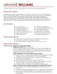 Functional Summary Resume Examples Customer Service Resume Papers