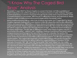 i know why the caged bird sings phenomenal w  i know why the caged bird sings analysis