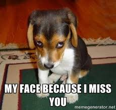 my face because I miss you - Sad Puppy | Meme Generator via Relatably.com