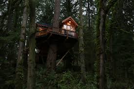 alex treehouse masters. Treehouse Masters #5 Alex F