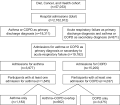 Asthma Pathophysiology Flow Chart Flowchart Describing Participants Included In The Present