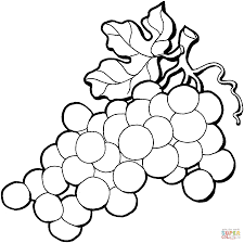 Small Picture Grape 4 Coloring Page Free Printable Coloring Pages Coloring Home