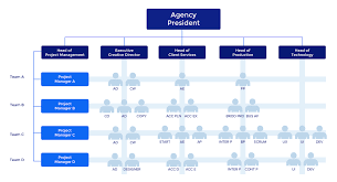 A Typical Organization Chart Showing Delegation Of Authority Would Show The 3 Most Common Advertising Agency Hierarchies How To