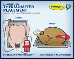 Butterball Turkey Baking Chart How To Place A Meat Thermometer In 2019 Stuffed Whole