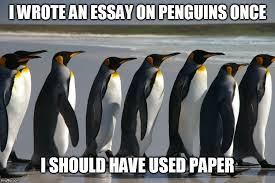 penguin flip i wrote an essay on penguins once i should have used paper image tagged in